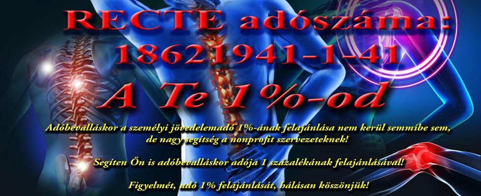 fekv-1-szzalk